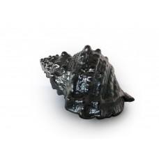 Conchiglia Silver (tipo 3)